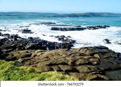 Nugget Point coastline, near Kaka Point, Catlins Coast, South Otago, South Island, New Zealand.