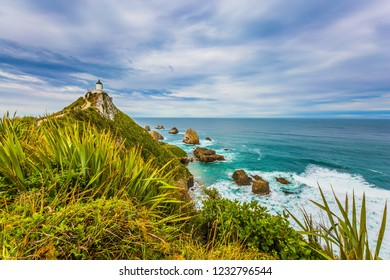 Nugget Point Lighthouse on the cape of the Kathlins coast of the South Island. Travel to New Zealand. The concept of active, eco and photo tourism