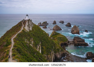 Nugget Point With Lighthouse on South Coast of Otago, New Zealand
