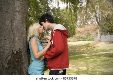 Nuisance cat between couple kissing next to tree in garden or park
