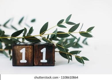number 11 ( eleven )