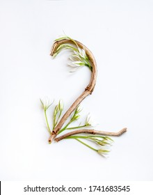 Number 2 from tree branches decorated with flowers, a craft from natural materials on a white background.