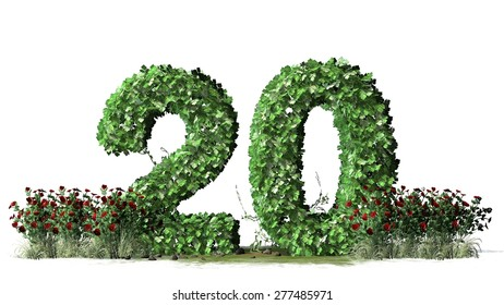 Number 20, alphabet of green ivy leaves  behind rose bushes - isolated on white background