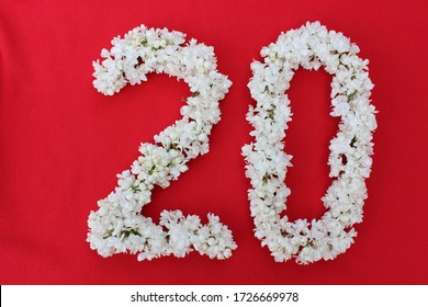The number 20 is written in white lilac flowers on a red background. The number twenty is written in fresh flowers, isolated on red. Arabic numeral lined with flowers.