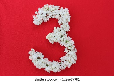 The number 3 is written in white lilac flowers on a red background. The number three is written in fresh flowers, isolated on red. Arabic numeral lined with flowers.