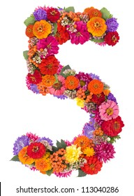 number 5 made from flowers