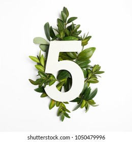 Number five shape with green leaves. Nature concept. Flat lay. Top view