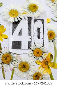 The number forty surrounded by pressed daisies and winter aconite flowers . A fortieth birthday card natural  floral design in yellow , white , green and black .