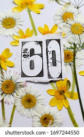 The number sixty surrounded by pressed daisies and winter aconite. A floral sixtieth birthday card design in yellow , white , green and black