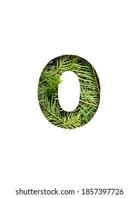 Number zero made of natural spruce x-mas tree and paper cut null shape isolated on white. Font from fir twigs