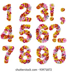 numbers of flowers isolated on a white background