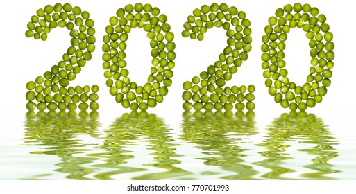 Numeral 2020 from green peas, reflection in water, isolated on white background