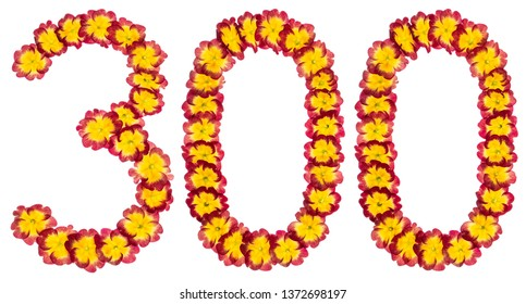 Numeral 300, three hundred, from natural flowers of primula, isolated on white background