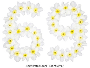 Numeral 69, sixty nine, from natural white flowers of Daffodil (narcissus), isolated on white background