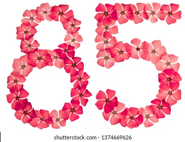 Numeral 85, eighty five, from natural red flowers of periwinkle, isolated on white background