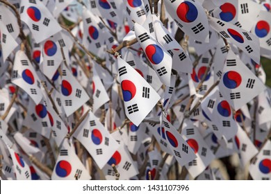 Numerous Korean national flags hung from branches (Taegeukgi)