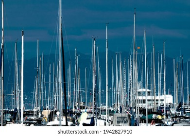 Numerous yacht masts against backdrop of dark hills and cloudy evening sky
