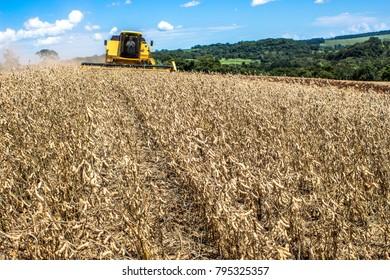 Nuporanga Brazil. February 20, 2013. Mechanized soybean harvest on a farm in the municipality of Nuporanga
