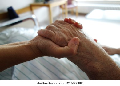 nurse holding a hand of a patient