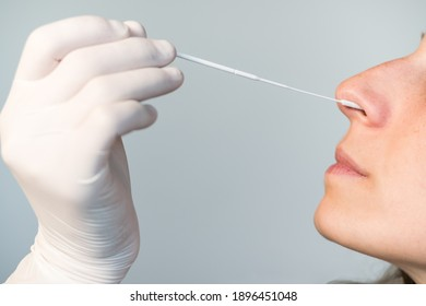 A nurse wearing latex gloves inserts a swab into a woman's nose to collect a possible positive COVID-19 sample during the pandemic. Antigen test procedure.