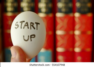 nurturing or incubator startup concept. startup word wrote on the egg shell with the background of text book