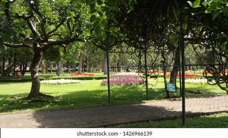 at the nusantara flower garden in cisarua, west java, indonesia. photo taken in june 2019