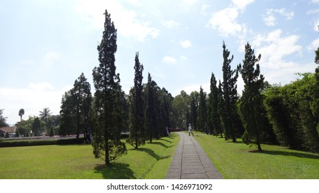at the nusantara flower garden in cisarua , west java, indonesia. photo taken in june 2019. its ones of the biggest garden and park in the world