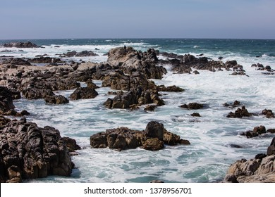 The nutrient-rich waters of the Pacific Ocean washes against the rugged and rocky California coastline just south of Monterey Bay. This area is known for its spectacular natural scenery.