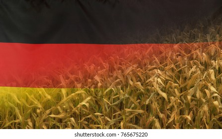 Nutrition food concept corn field in sunny afternoon light merged with fabric flag of Germany