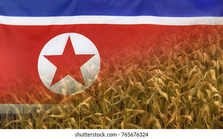 Nutrition food concept corn field in sunny afternoon light merged with fabric flag of North Korea