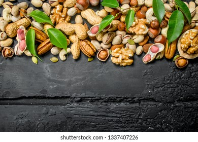 Nuts background. Different kinds of nuts with leaves. On black rustic background.