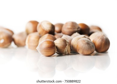 nuts isolated on white studio background
