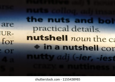 nutshell word in a dictionary. nutshell concept.