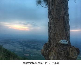 Nuture mountain napa at phetchabun