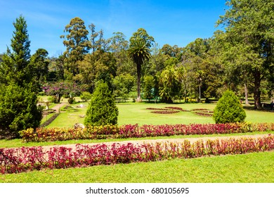 NUWARA ELIYA, SRI LANKA - FEBRUARY 22, 2017: The Victoria Park is a public park located in Nuwara Eliya, Sri Lanka. The park was formally named in 1897 to commemorate Queen Victoria.