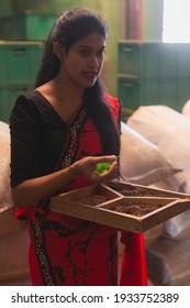 Nuwara Eliya, Sri Lanka - March 20 2019: A local Sri Lankan tour guide gives a tour of a tea plantation factory near Nuwara Eliya, Sri Lanka hill country.