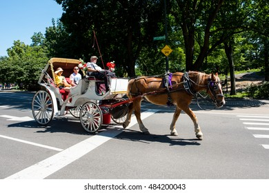 NYC, New York: August 28, 2016: Horse-drawn carriage in NYC.  NYC mayor Bill de Blasio wanted to ban the horse-drawn carriage but the ban has never taken place.