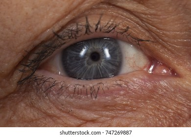 NYKOPING, SWEDEN - OCTOBER 22: Close up of a human eye in Nykoping, Sweden, October 22, 2017