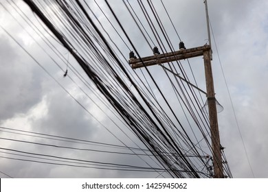 Nylon mesh is installed at the power poles to protect the animals. An electric pole with a messy cord. Electric pillar, cement on the background, sky rain.