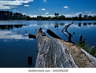 A NZ waterscape scenic photo of a lake in Hamilton, NZ,