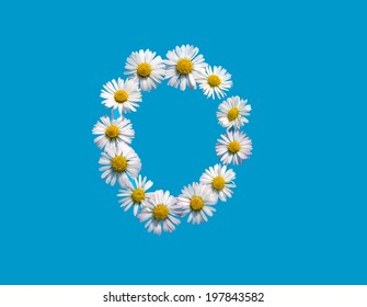 O capital letter in daisy flowers on blue background