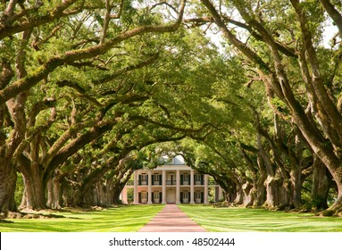 Oak Alley Plantation, hanging oak tree branches and brick path
