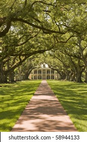 Oak Alley Plantation, with the oak tree path