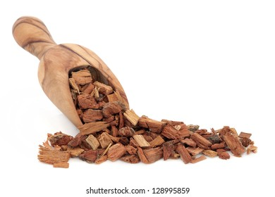 Oak bark herb in an olive wood scoop over white background. Used in alternative herbal medicine.