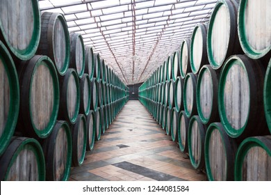 Oak barrels with the wine