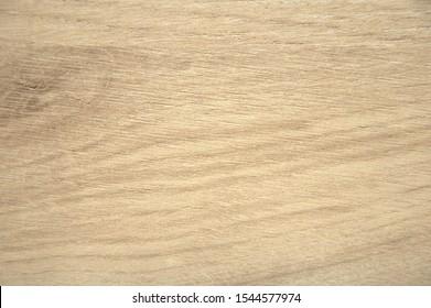 Oak, rough texture of natural wood on a cut closeup. Background.