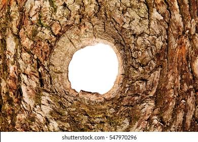 oak texture with a circular hole