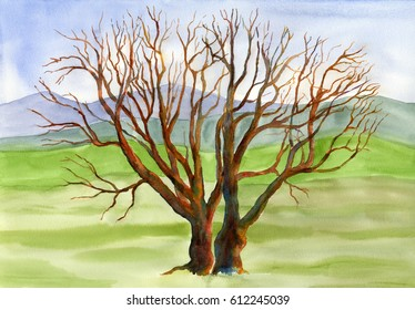 Oak tree with background landscape watercolor painting hand painted illustration