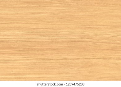 oak tree timber wood veneer structure texture background backdrop