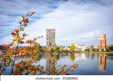 Oakland, CA. Lake Merritt view with the focus on flowering branches in the foreground